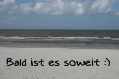 2019 - Inselbilder